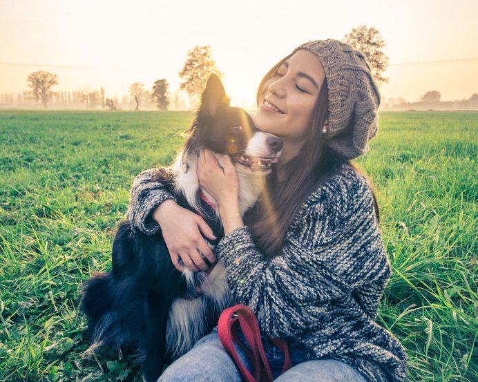adopción canina que sale bien